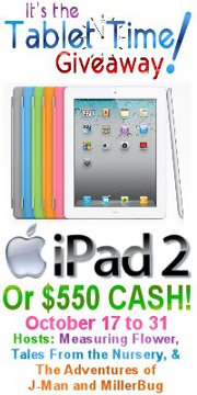 Win an iPad 2 Tablet Time Giveaway Large